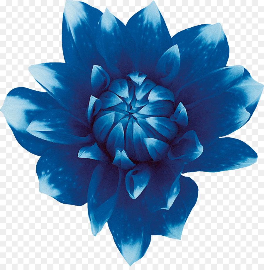 Sweet blue flowers sweet blue flowers red blue flower png download sweet blue flowers sweet blue flowers red blue flower izmirmasajfo