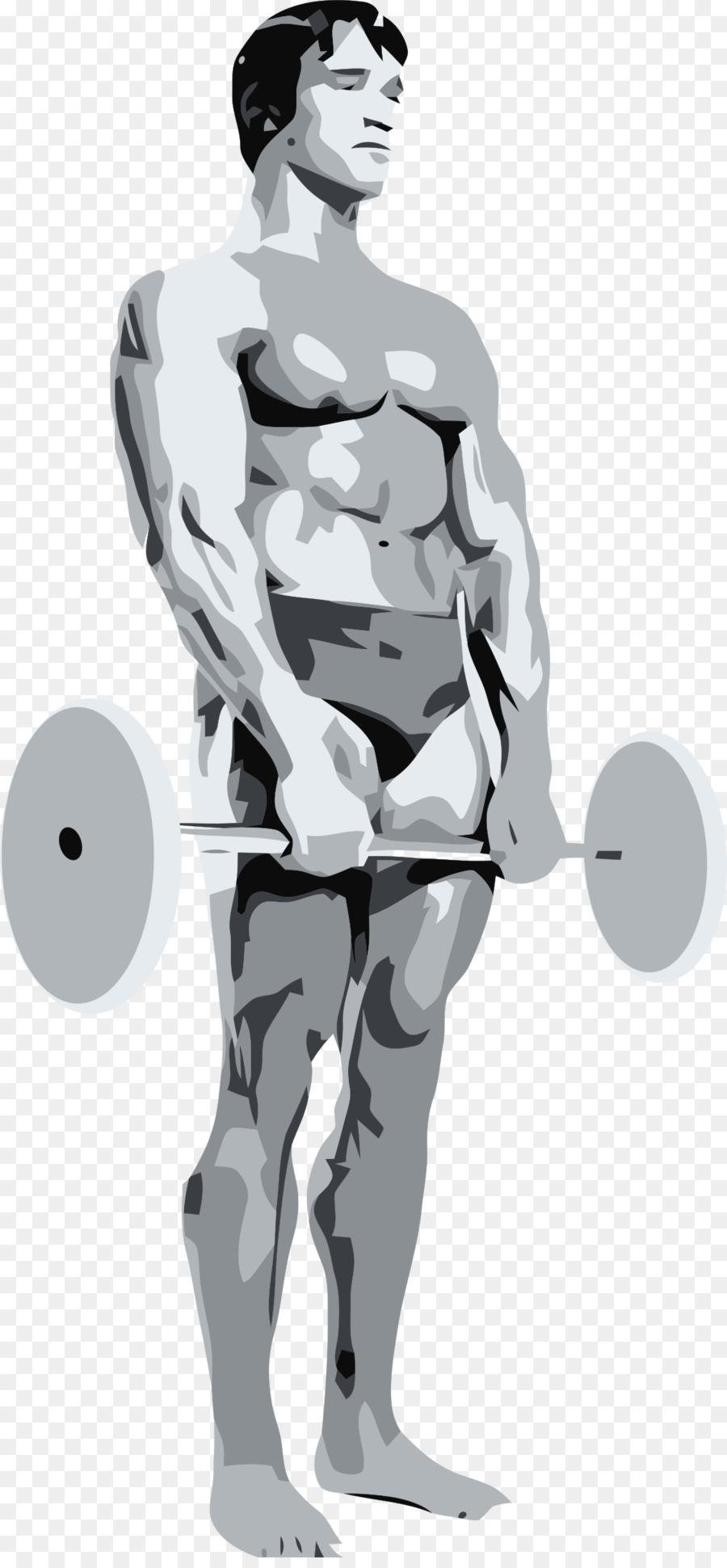 Mr Olympia Culturismo el ejercicio Físico Gimnasio Clip art - cuerpo ...