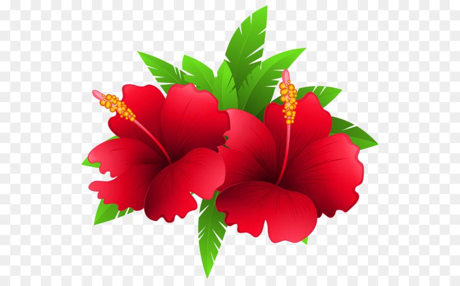 shoeblackplant flower clip art tropical flower png hawaiian flower clip art coloring pages hawaiian flower clip art black white