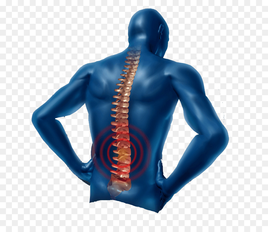 Low Back Pain Neck Pain Physical Therapy Pain Management Human Png