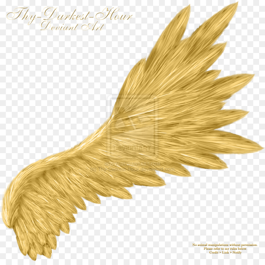 Angel wings Clip art - angel wings png download - 900*888 - Free ...