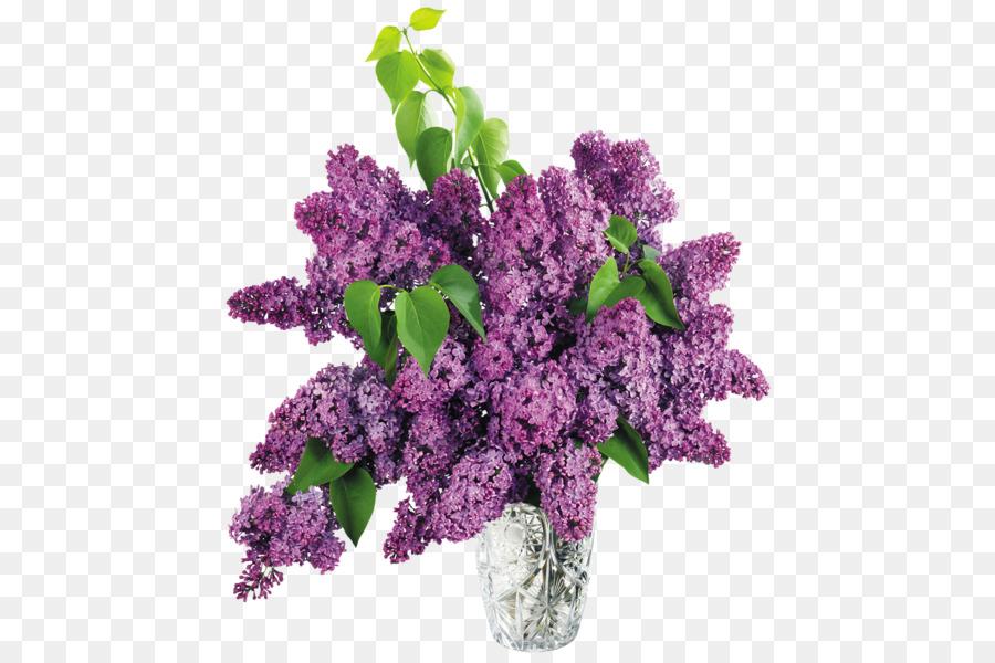 Common Lilac Vase Clip Art Purple Flowers