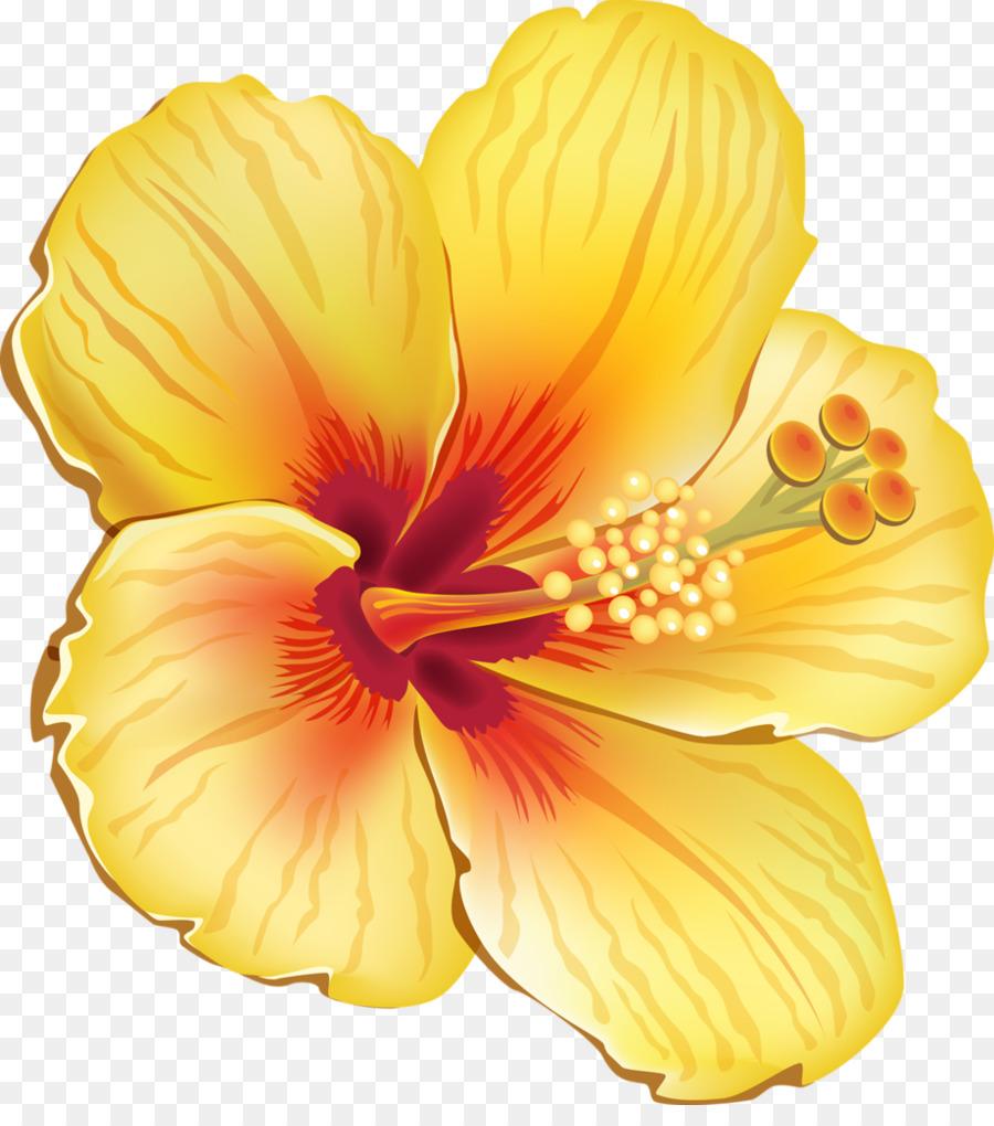 Hawaiian hibiscus shoeblackplant flower clip art tropical flower hawaiian hibiscus shoeblackplant flower clip art tropical flower izmirmasajfo
