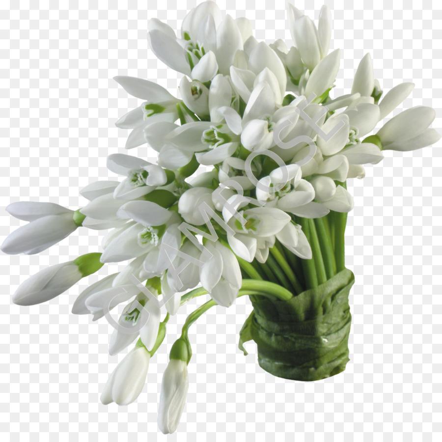 Snowdrop Flower Bouquet Desktop Wallpaper Snowdrop Png Download