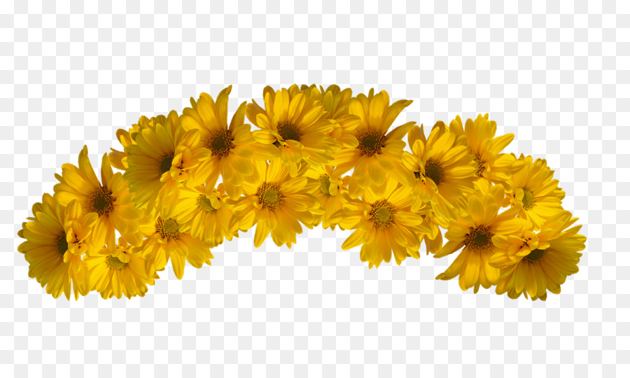 Flower Yellow Color - flower crown png download - 1084 650 - Free  Transparent Flower png Download. a85619403dd