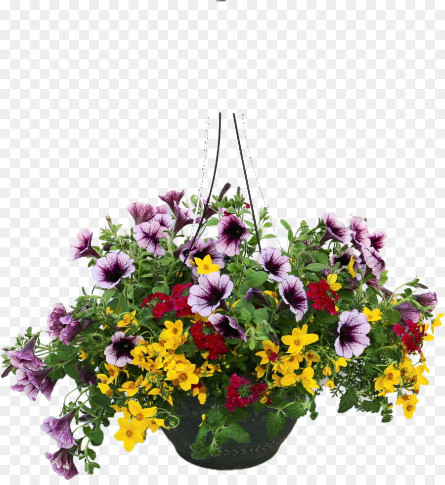 Floral design annual plant flower tidy towns floristry flower pot floral design annual plant flower tidy towns floristry flower pot izmirmasajfo