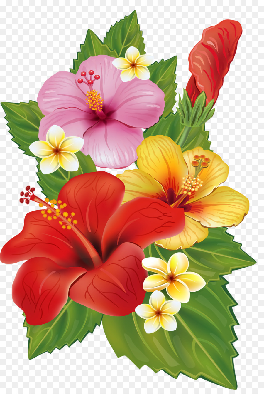 Flower bouquet Decorative arts Clip art - tropical flower png ...