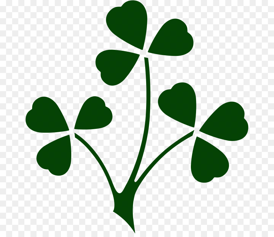 Ireland Irish Rugby British Irish Lions London Irish Six Nations