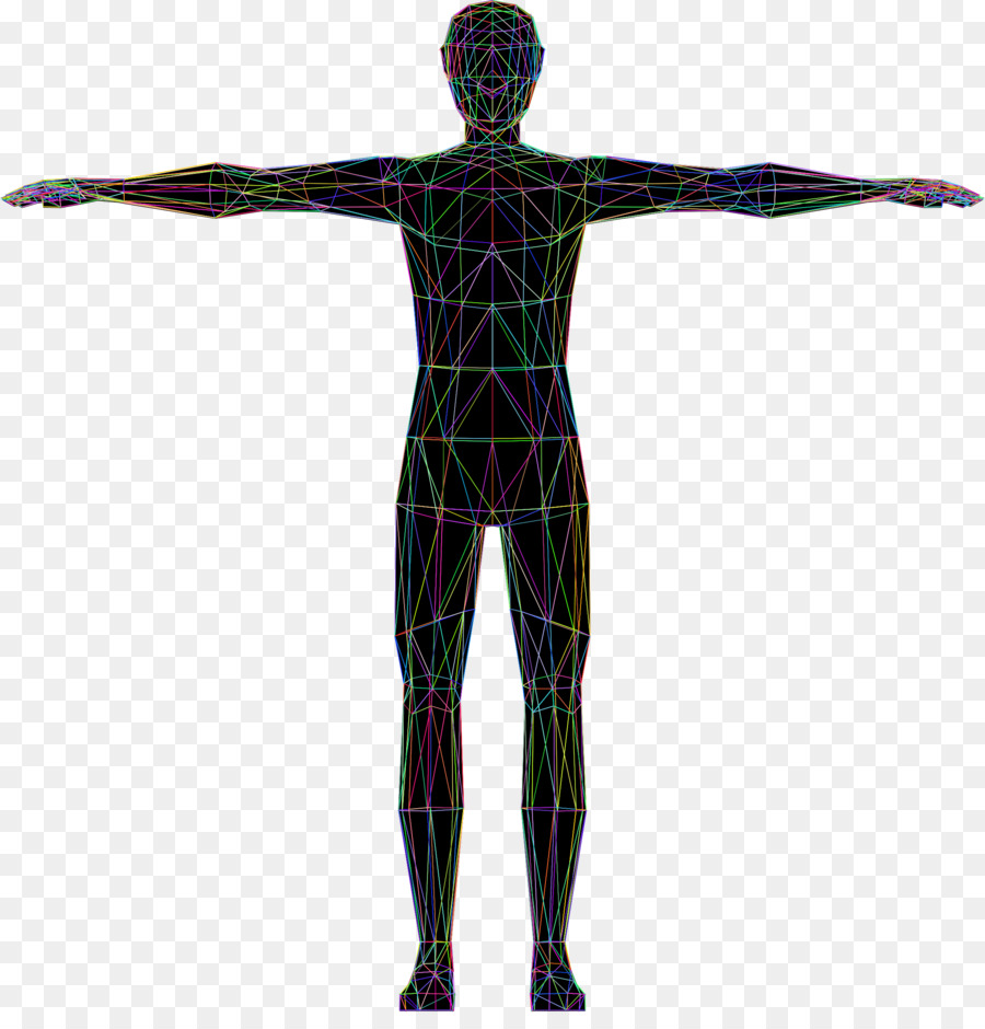 Vitruvian Man Human Body Homo Sapiens Drawing Clip Art Human Png