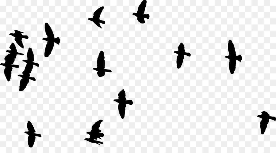 bird flight flock clip art birds silhouette png download 2246 rh kisspng com flying bird clip art images flying birds clipart png
