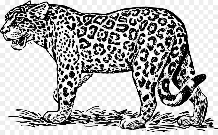 Jaguar ocelot black and white clip art jaguar 21621318 transprent png free download carnivoran lion dog like mammal