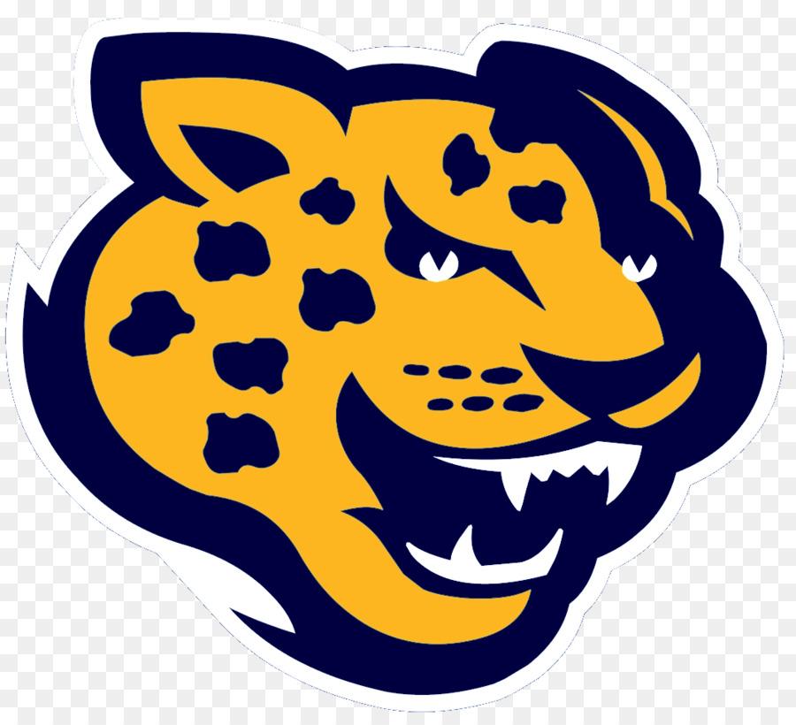 Southern Jaguars Football Southern Jaguars Womenu0027s Basketball Southern  Jaguars Baseball Southern University And Au0026M College Jacksonville Jaguars    Jaguar