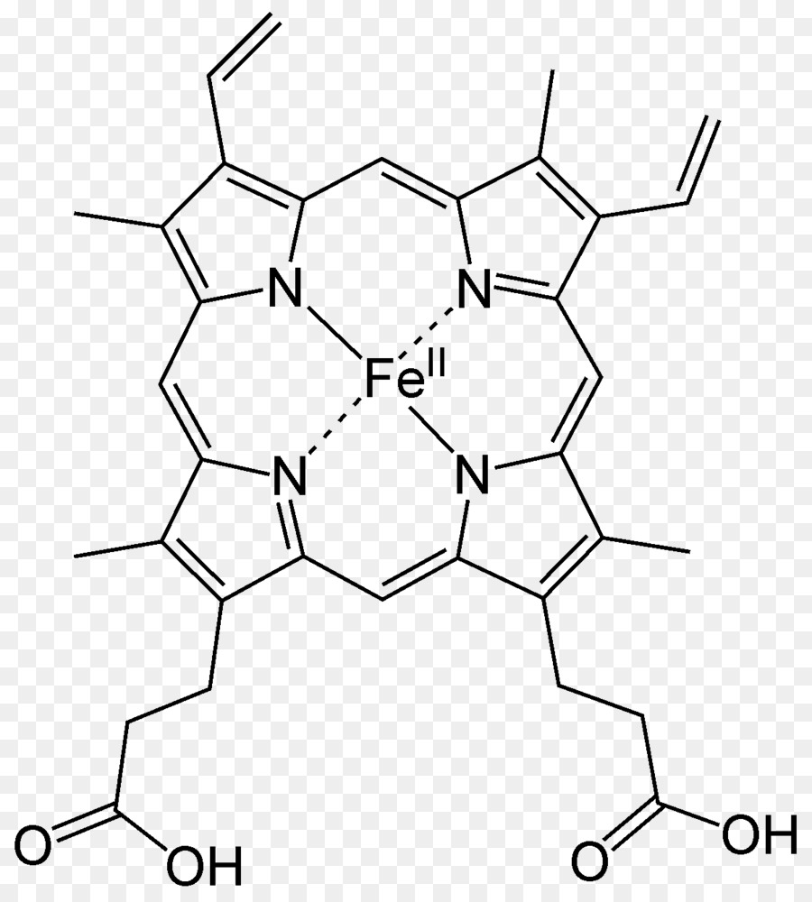 heme hemoglobin porphyrin coordination complex hemin - b png download - 1210 1338