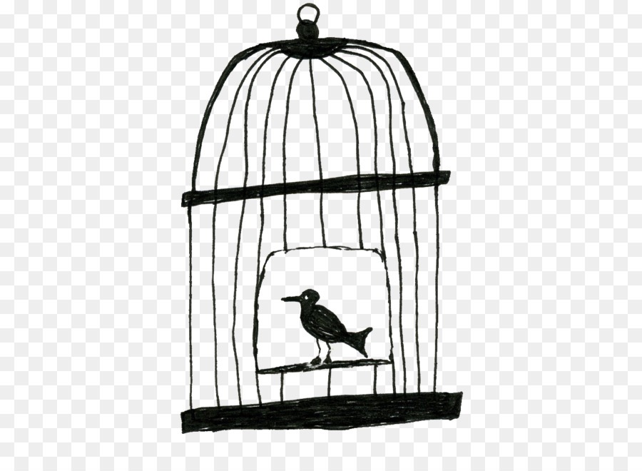 Lovebird Sangkar Burung Gambar Sangkar Burung