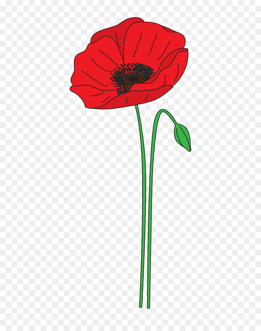 Remembrance Poppy Anzac Day Flower Clip Art Poppy Png Download