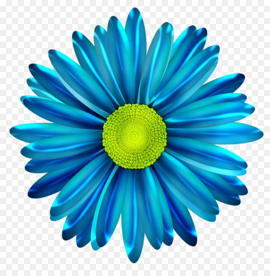 Common Daisy Blue Flower Clip Art Daisy Png Download 962972