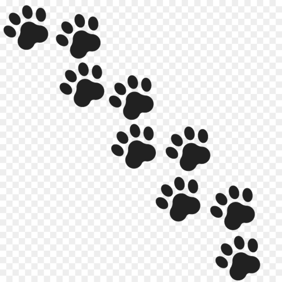 Gray Wolf Paw Royalty-free