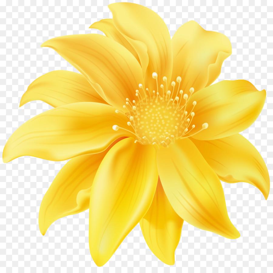 Flower Yellow Desktop Wallpaper Clip Art