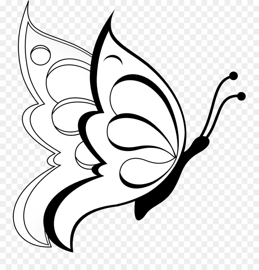 Butterfly Drawing Line Art Clip