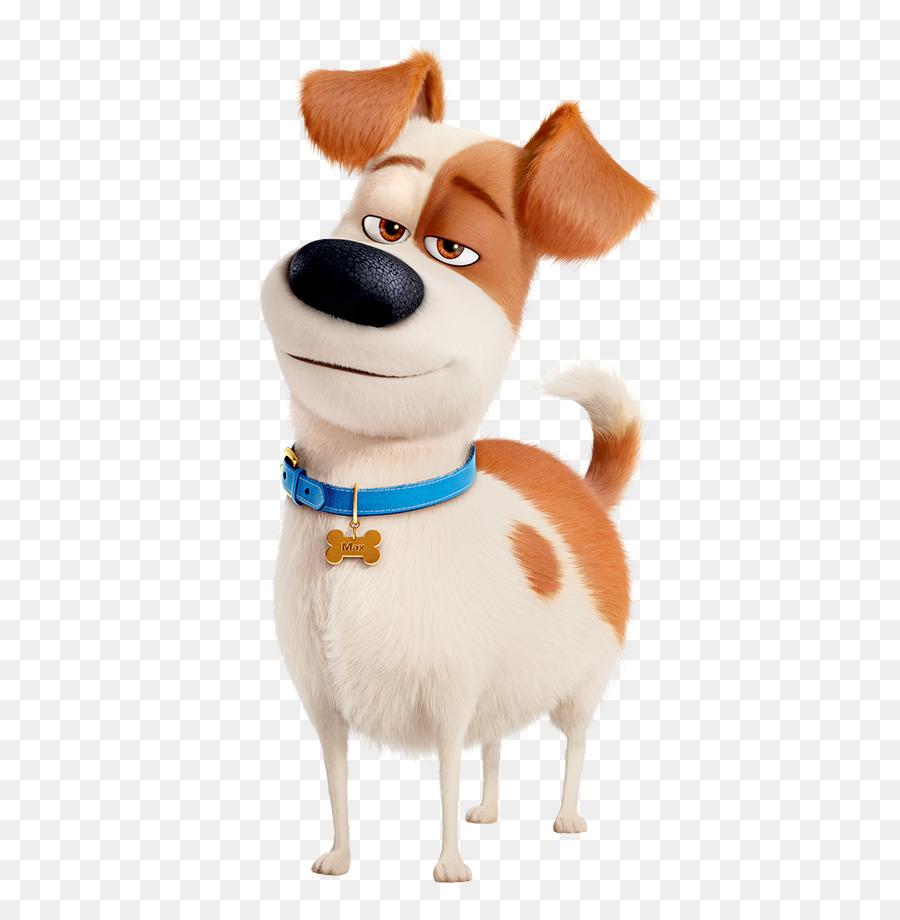 max gidget dog pet film pets png download 501 917 free transparent companion dog png download. Black Bedroom Furniture Sets. Home Design Ideas