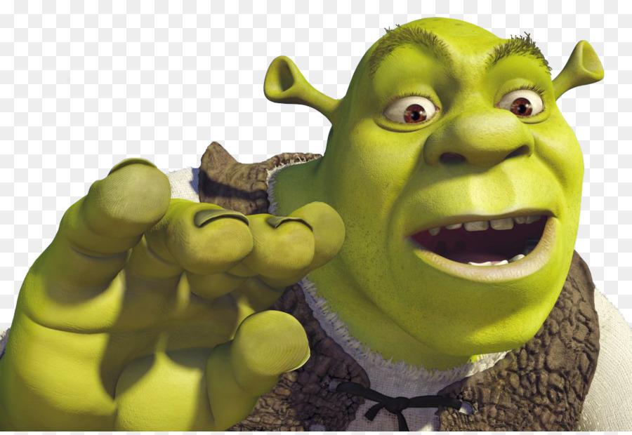 Donkey Princess Fiona Shrek Film Series
