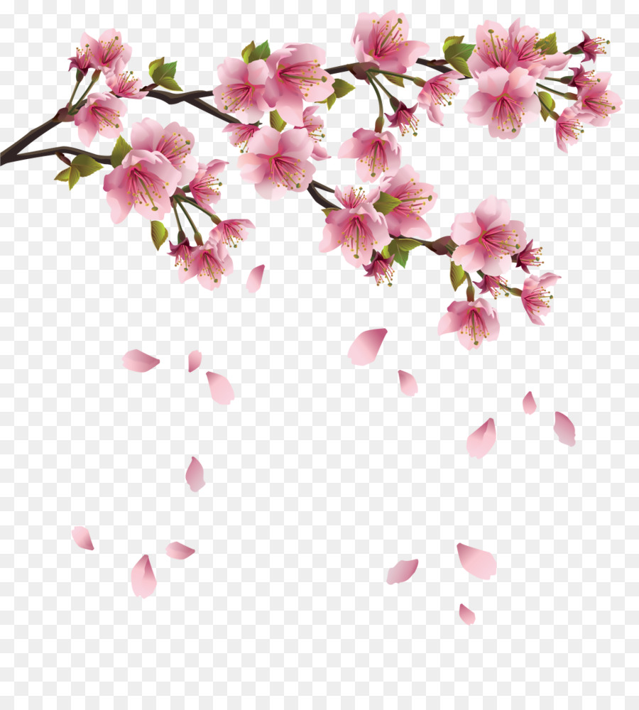 Paper cherry blossom clip art spring flowers png download 1024 paper cherry blossom clip art spring flowers mightylinksfo