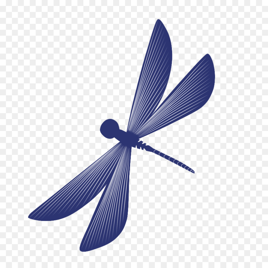 Insect Dragonfly Cartoon Dragonfly Png Download 894 894 Free