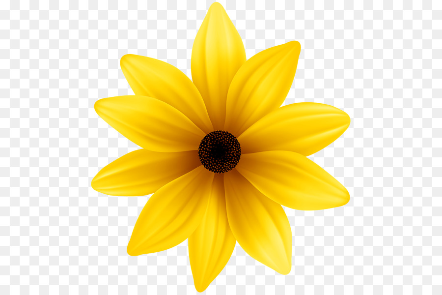 Flower Yellow Blue Clip Art Yellow Flowers Png Download 538600