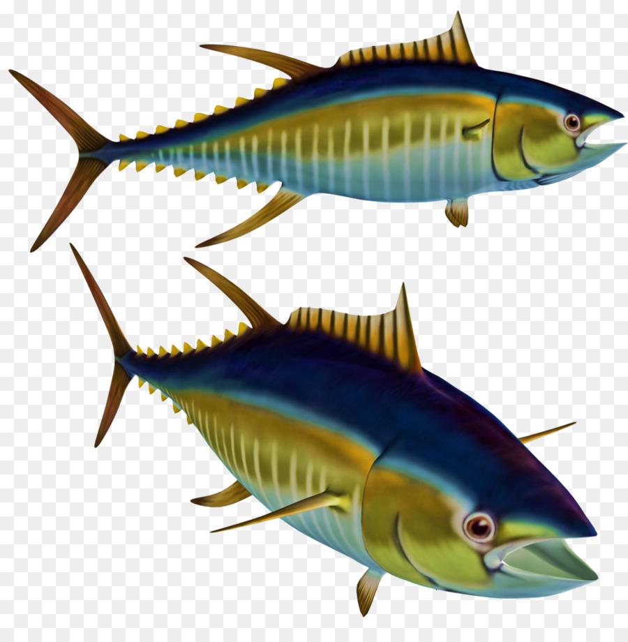 Fish Albacore Tuna Clip art - tuna png download - 1024*1044 - Free ...