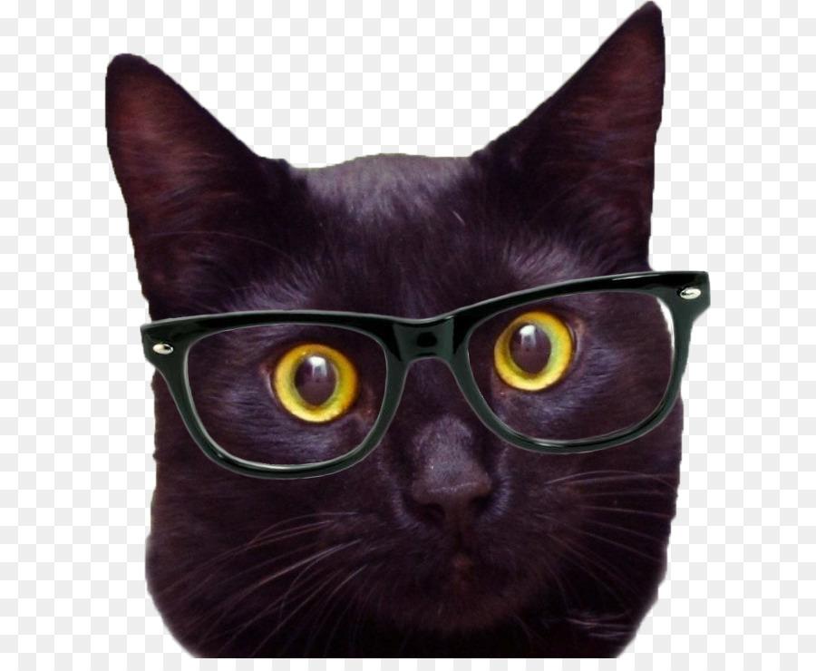 Black Cat Desktop Wallpaper Hipster Mobile Phones