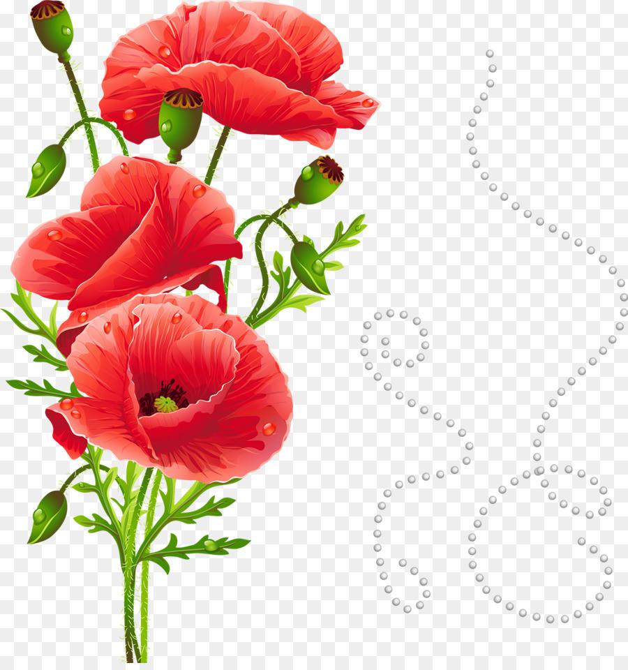 Common Poppy Papaver Nudicaule Flower White Poppy Poppy Png
