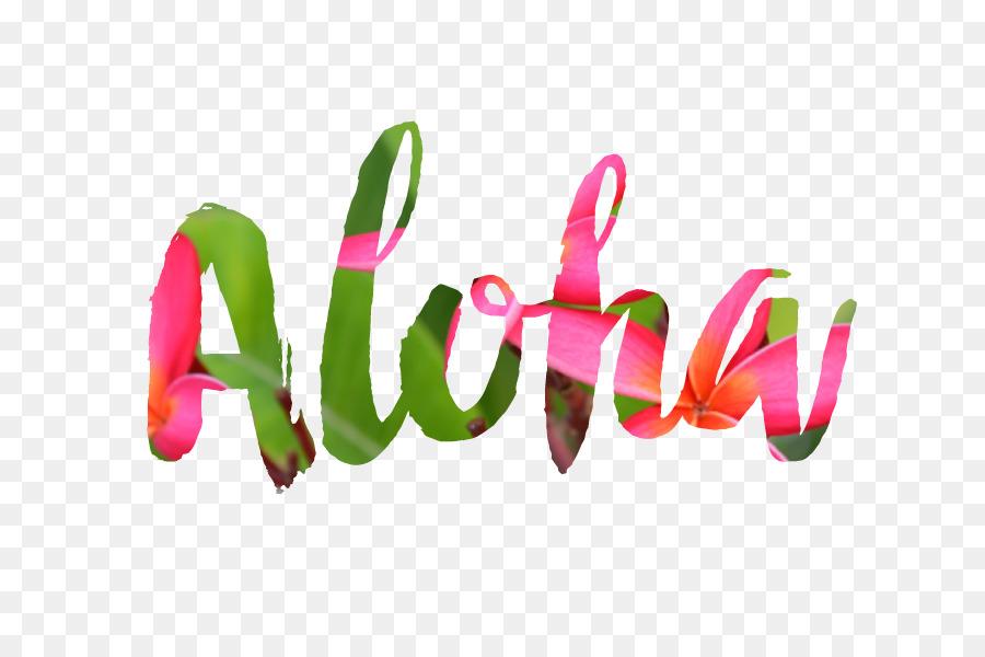 Hawaii Aloha Desktop Wallpaper