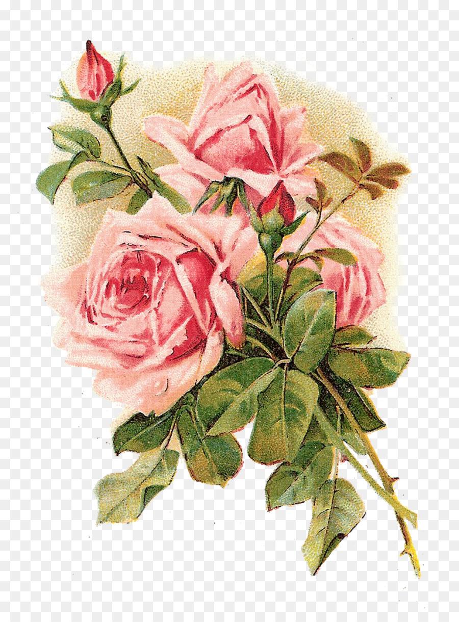 Rose Vintage Clothing Flower Pink Shabby Chic Vintage Background