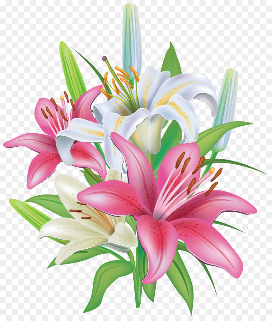 Easter Lily Tiger Lily Flower Clip Art Lily Png Download 3408