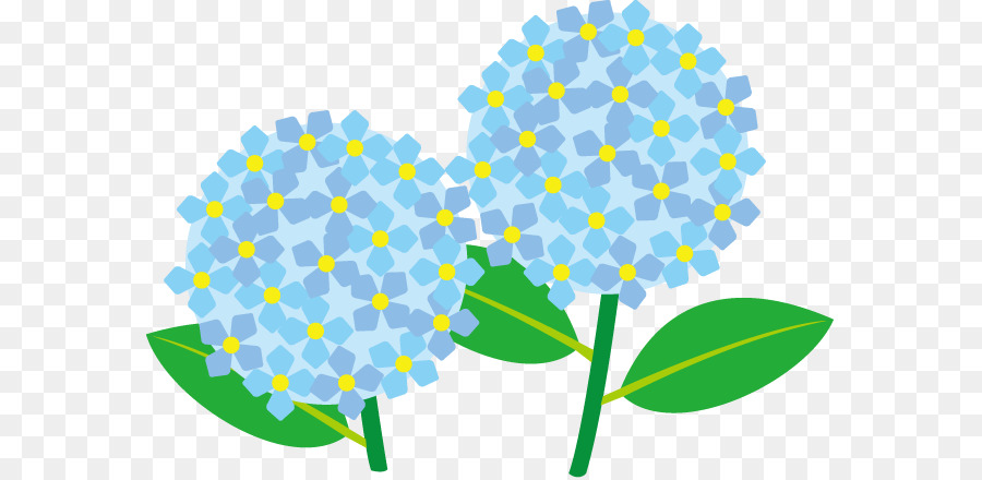 french hydrangea panicled hydrangea oakleaf hydrangea hydrangea rh kisspng com hydrangea clip art free clipart hydrangea images