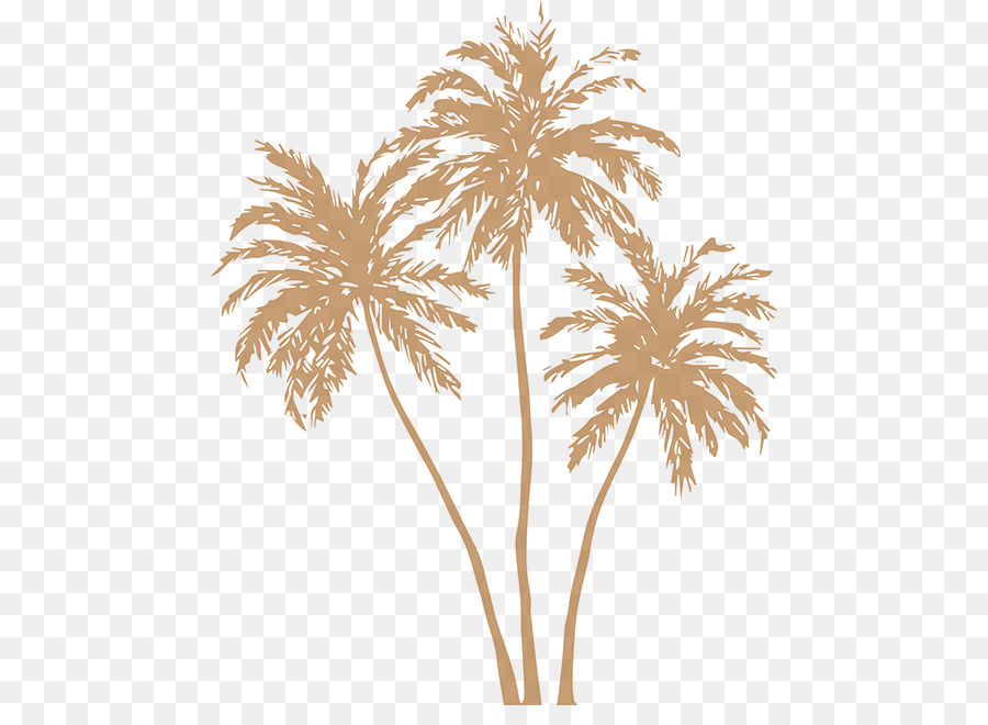 Arecaceae Silhouette Clip Art
