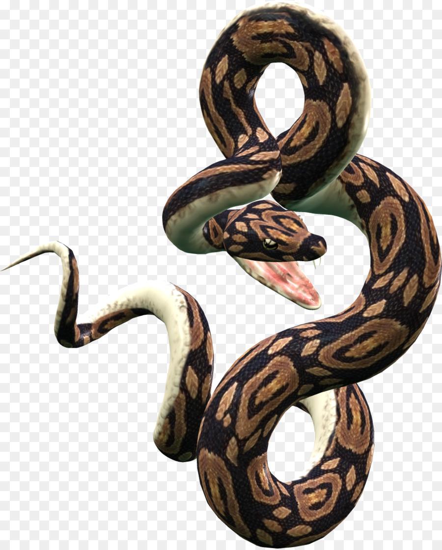 Serpiente pitón Reticulada Ball python Clip art - las serpientes png ...