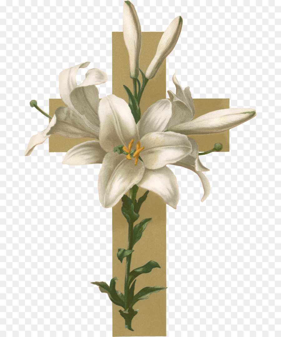 Easter Lily Christian Cross Flower Funeral Clip Art Lily Png