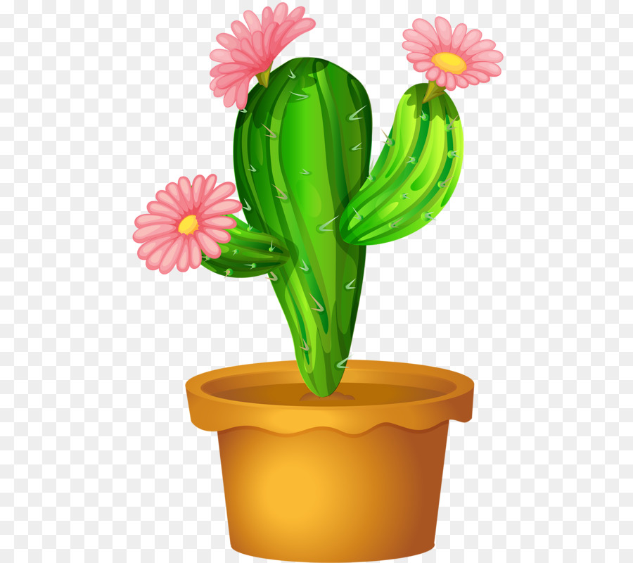 Cactus flower. Flowers clipart background png