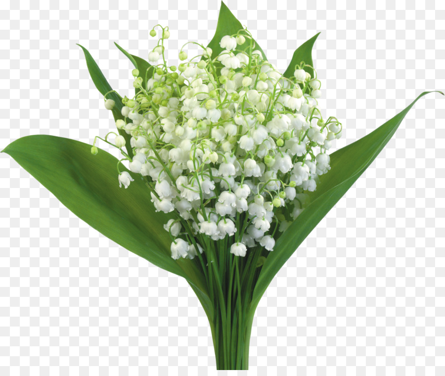 Flower bouquet Clip art - lily of the valley png download - 1200*997 ...