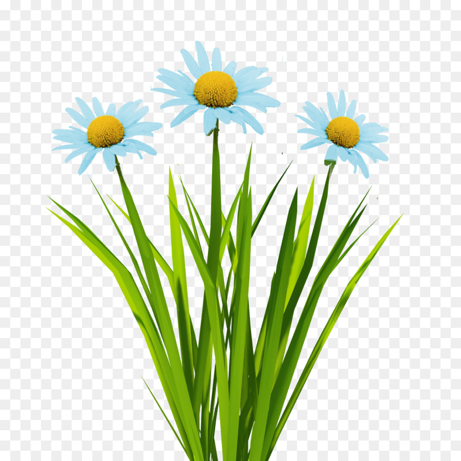 Texture mapping Flower 3D computer graphics Animation - blue flowers ... for flower animated png  35fsj