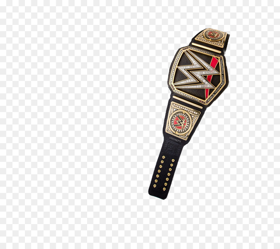 WWE Championship World Heavyweight Championship WWE Intercontinental  Championship Professional Wrestling Championship   Belt