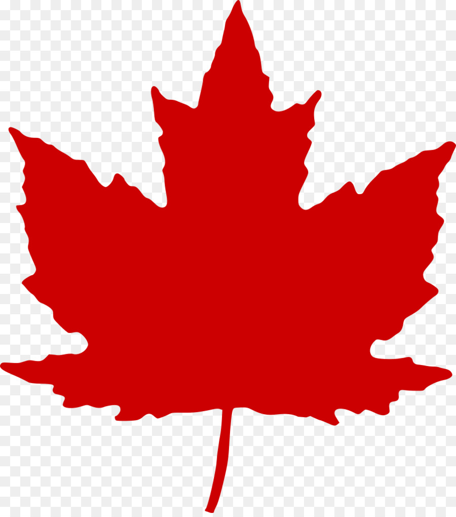 canada maple leaf clip art maple leaf png download 910 1023 rh kisspng com maple leaf clipart free maple leaf clipart png