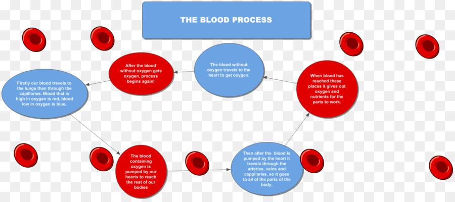 Diagrama de flujo Diagrama de sistema Circulatorio de la Coagulación ...