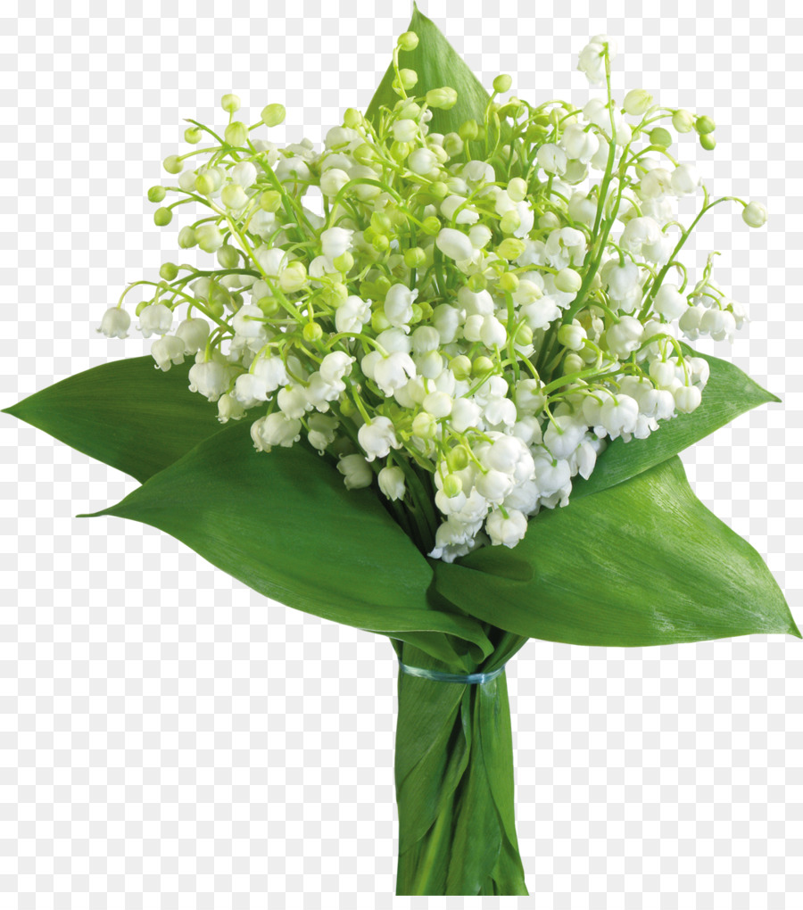 May 1 lily of the valley international workers day labour day may 1 lily of the valley international workers day labour day lily of the valley izmirmasajfo