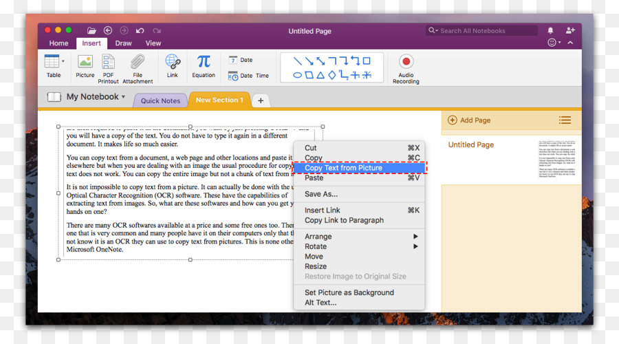 Microsoft OneNote Computer Software Optical Character Recognition Screenshot