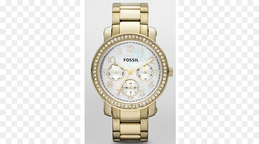 2cb35d57fae Correia de relógio Fóssil Grupo de Jóias de Ouro - fósseis ...