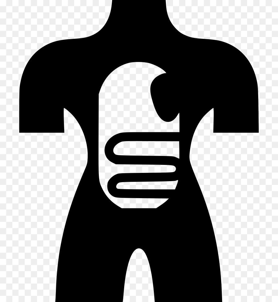 Cuerpo humano Disección de Anatomía Iconos de Equipo de Músculo ...