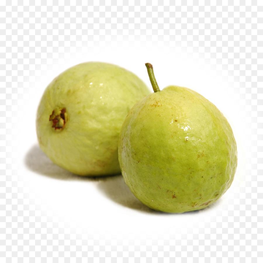 Mango Tree png download - 1080*1080 - Free Transparent Juice