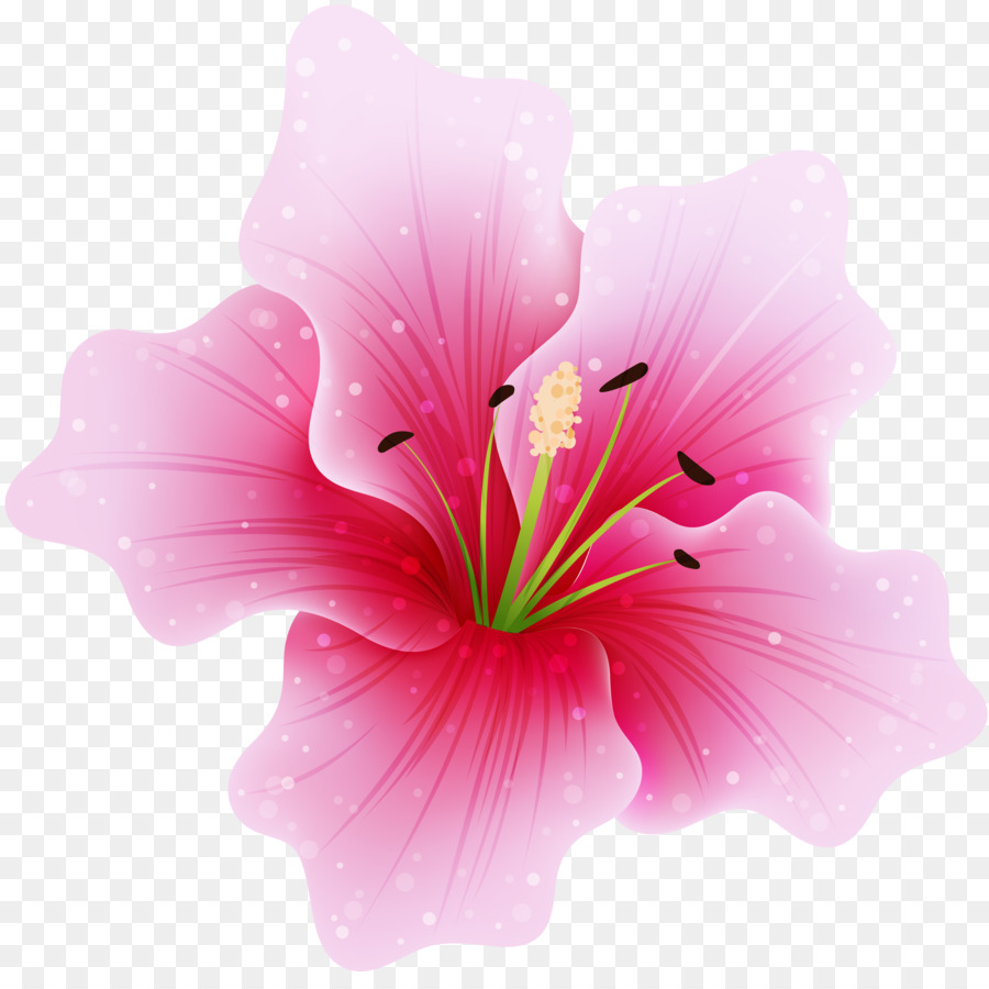 Pink flowers clip art flower drawing png download 37743708 pink flowers clip art flower drawing mightylinksfo